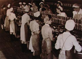 Old Photo of Cannery Workers